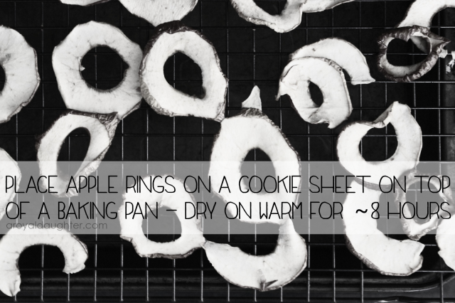 How to Dehydrate apples1