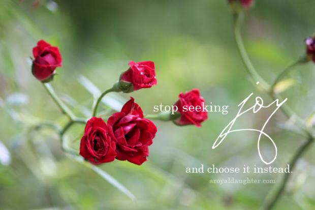 Stop seeking joy and choose it instead